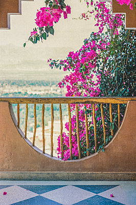 Balcony overlooking Atlas mountains with pink bougainvillea - p1047m2279932 by Sally Mundy