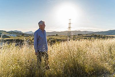 Senior man standing on a field at sunset - p300m2113957 von VITTA GALLERY