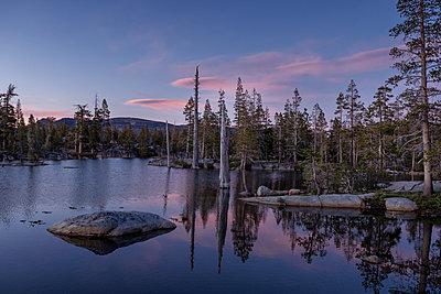 Forest lake at sunrise, Sierra Nevada, California - p756m2295397 by Bénédicte Lassalle