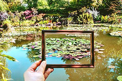 Water lilies with frame at Monet's garden ( Blurred hand )  - p864m2200634 by Michiru Nakayama