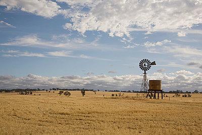 Ackerbau in Australien - p6280155 von Franco Cozzo