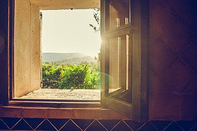 Abendsonne - p904m1044983 von Stefanie Päffgen