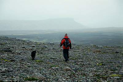 Trekking with a dog in Iceland  - p1028m2052805 by Jean Marmeisse