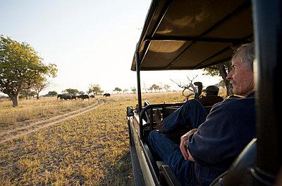 Safari guide in Botswana. - p3434767 by Adrian Bailey photography