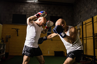 Two boxer practicing boxing in fitness studio - p1315m1198931 by Wavebreak