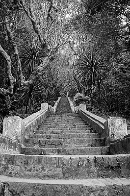 Luang Prabang, Stone Staircase - p1544m2122132 by Mirka van Renswoude