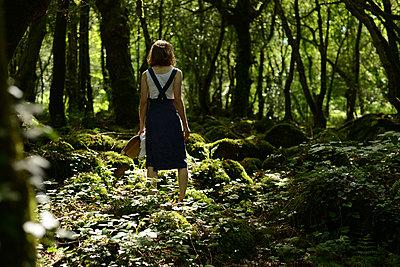 Gorges Stangala - p1631m2208670 von Raphaël Lorand