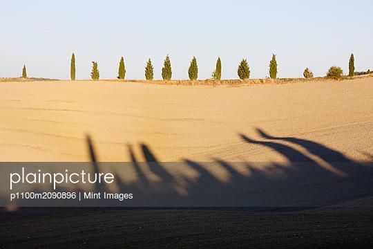 p1100m2090896 von Mint Images