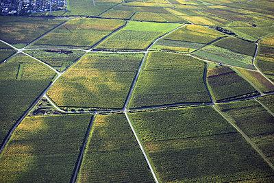 Ackerflächen bei Ehrbach - p1016m2045207 von Jochen Knobloch