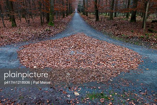 Waldweg - p417m1218936 von Pat Meise