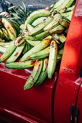 Bananas on Red pick-up - p1253m2148468 by Joseph Fox