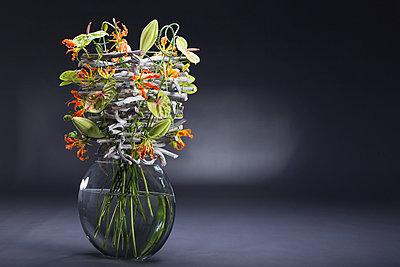 Floral arrangement of stone wood, Allium sativum, Anthurium, Gloriosa superba, Lilium longiflorum, Passiflora caerulea - p300m1015038 by Anna Müller