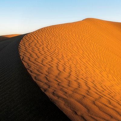 Sand dunes - p636m2021656 by François-Xavier Prévot