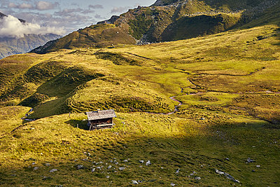 Alpine meadow and mountain cabin - p704m1476003 by Daniel Roos