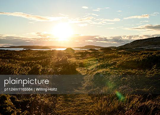 Landschaft im Gegenlicht - p1124m1165584 von Willing-Holtz