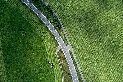 ein Feld wird im Schwarzwald abgeerntet - p1354m1423590 von Kaiser