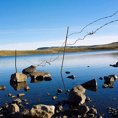 River bank - p8130432 by B.Jaubert