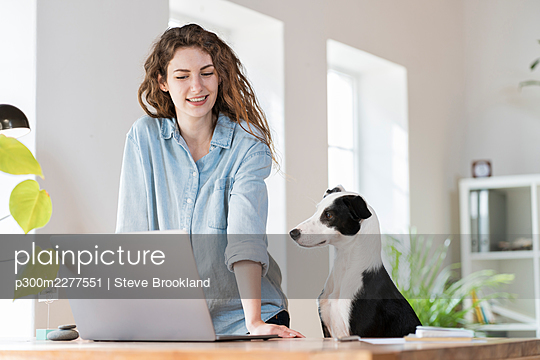 Smiling businesswoman looking at laptop while standing by dog in home office - p300m2277551 by Steve Brookland