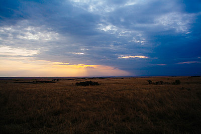 The Serengeti - p1002m833740 by christian plochacki