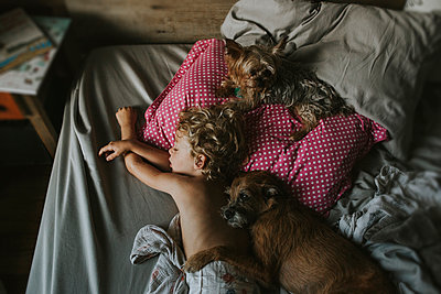 High angle view of boy sleeping with dogs on bed at home - p1166m1203755 by Cavan Images
