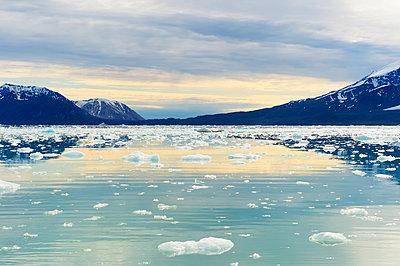 Lilliehook glacier in Lilliehook fjord, a branch of Cross Fjord, Spitsbergen Island, Svalbard Archipelago, Arctic, Norway, Scandinavia, Europe - p871m1180867 by G&M Therin-Weise