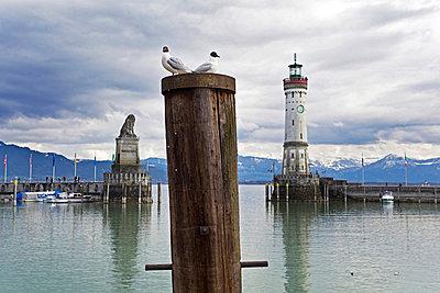 Lindauer Hafen am Bodensee - p627m672348 by Kirsten Nijhof