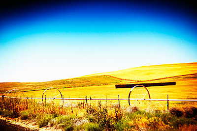 Agricultural Sprinklers along roadside in Golden Landscape, Oregon, USA - p694m2218849 by Justin Hill photography