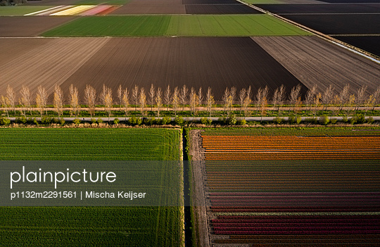 An alley between several fields, aerial view - p1132m2291561 by Mischa Keijser