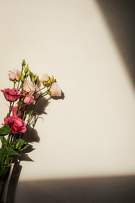 Vase of lisianthus flowers and shadow - p1047m1540177 by Sally Mundy