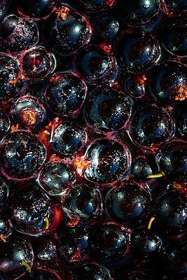 Black Balls - p587m1466595 von Spitta + Hellwig