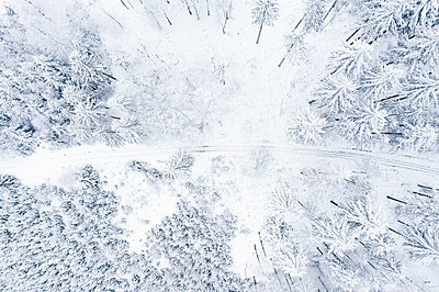 Snow-covered road through a forest - p713m2289265 by Florian Kresse