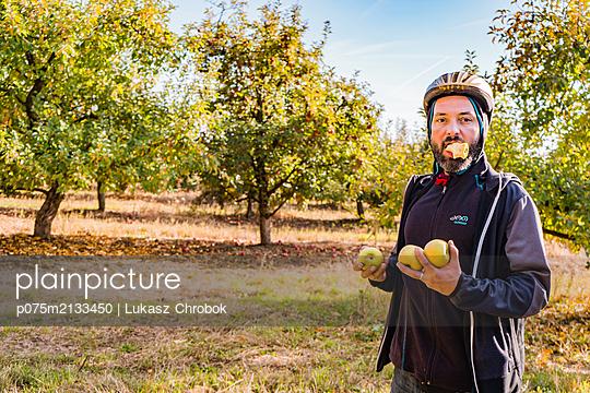 Mann stiehlt Äpfel - p075m2133450 von Lukasz Chrobok