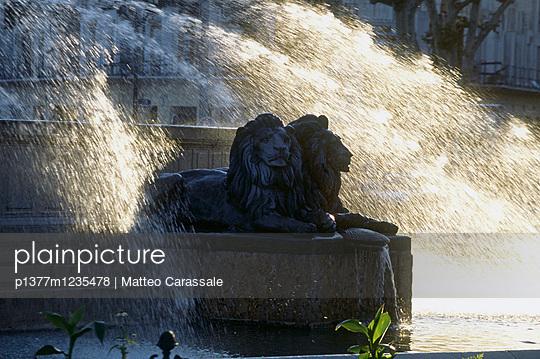 p1377m1235478 von Matteo Carassale
