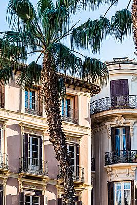 Wohnambiente, Malaga - p488m1169003 von Bias