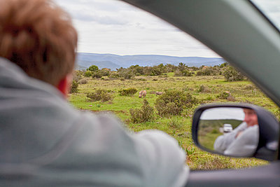 National Park, South Africa - p075m1025505 by Lukasz Chrobok