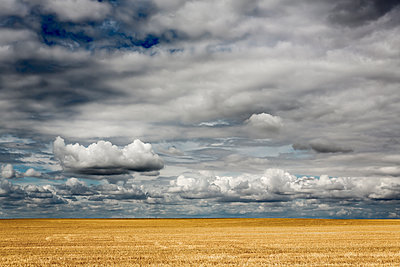 Dramatic cloudscape over a harvested field - p1057m2008296 by Stephen Shepherd