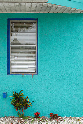 Turquoise wall - p045m816869 by Jasmin Sander
