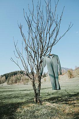Kleid an einem Baum - p1190m2177890 von Sarah Eick