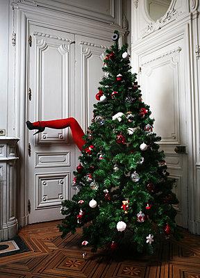 Xmas stocking - p1081m1044764 by Cédric Roulliat