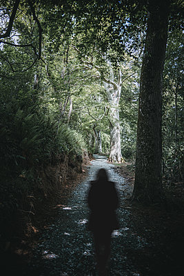 Woman is walking in the forest - p1681m2283626 by Juan Alfonso Solis
