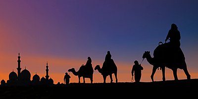 Camel caravan arriving at mosque, Abu Dhabi, United Arab Emirates - p429m1021934f by Lost Horizon Images