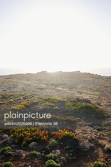 Karge Landschaft - p464m2026408 von Elektrons 08