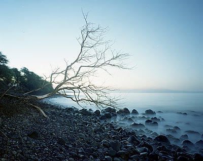 Scenic view of shore against sky during foggy weather - p1166m1545011 by Cavan Social