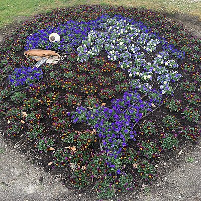 Blumenbeet - p1401m2263640 von Jens Goldbeck