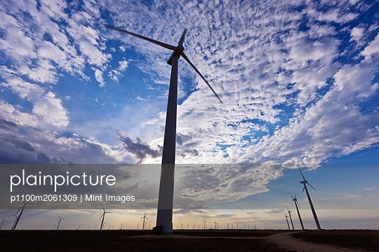 p1100m2061309 von Mint Images