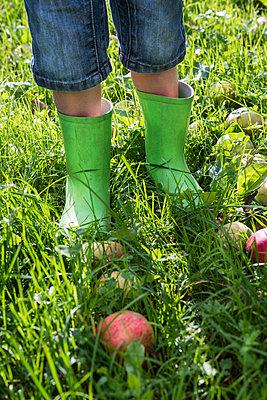 Gummistiefel - p954m1492932 von Heidi Mayer