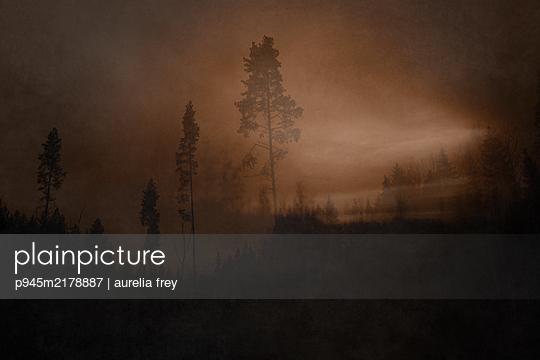 Misty landscape - p945m2178887 by aurelia frey