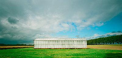 Greenhouse - p1132m925604 by Mischa Keijser