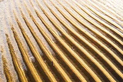 Rippled sand - p312m1121808f by Mikael Svensson