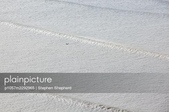 Surfer in the sea - p1057m2292965 by Stephen Shepherd